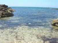 Golfo del Cofano - scogliera, mare stupendo - 30 agosto 2008  - San vito lo capo (548 clic)