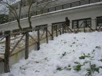 neve sul monte Bonifato - Riserva Naturale Orientata Bosco d'Alcamo - ex locale La Funtanazza - 15 febbraio 2009  - Alcamo (3170 clic)