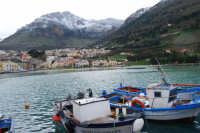 vista dal porto della città e del monte Inici innevato - 14 febbraio 2009  - Castellammare del golfo (1110 clic)