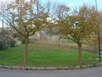 sulla strada che porta all'Eremo S. Pellegrino - 9 novembre 2008  - Caltabellotta (1416 clic)