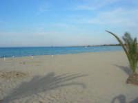 spiaggia e mare - 10 maggio 2009    - San vito lo capo (1799 clic)