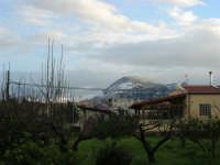 Monte Bonifato innevato - 14 febbraio 2009   - Alcamo (2169 clic)