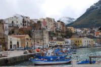 vista dal porto della città e del monte Inici innevato - 14 febbraio 2009  - Castellammare del golfo (1892 clic)