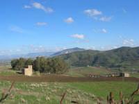 Alcamo ed il Monte Bonifato visti da Segesta - 14 dicembre 2008   - Segesta (708 clic)