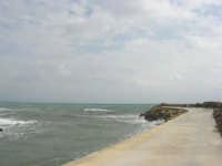 sul molo - 1 marzo 2009  - Marinella di selinunte (2197 clic)