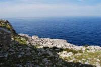 Capo San Vito - l'azzurro del mare - 10 maggio 2009  - San vito lo capo (1192 clic)