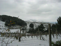 neve sul monte Bonifato e monti di Castellammare nnevati - 15 febbraio 2009  - Alcamo (2558 clic)