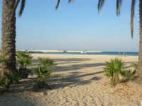 la spiaggia - 12 ottobre 2008   - San vito lo capo (605 clic)