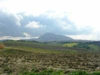 campagna alcamese e monte Bonifato - 23 febbraio 2009   - Alcamo (2655 clic)