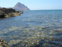 Golfo del Cofano - scogliera, mare stupendo - 30 agosto 2008  - San vito lo capo (609 clic)