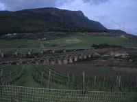 panorama campestre - i ponti dell'autostrada e della ferrovia sul Fiume Caldo - 8 febbraio 2009   - Calatafimi segesta (2336 clic)