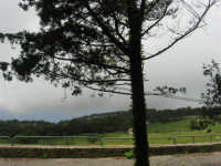 sul monte Erice - panorama . . . con foschia - 1 maggio 2009  - Erice (1745 clic)