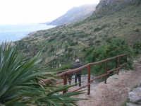 Riserva Naturale Orientata Zingaro - 24 febbraio 2008  - Riserva dello zingaro (791 clic)
