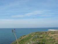 vista sul mare - 15 marzo 2009   - Balestrate (3276 clic)