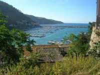 vista sul porto - 13 giugno 2009   - Castellammare del golfo (1615 clic)