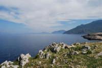 da Capo San Vito il golfo di Castellammare - 10 maggio 2009  - San vito lo capo (1824 clic)