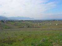 campagna alcamese e panorama del golfo di Castellammare - 23 febbraio 2009   - Alcamo (2537 clic)