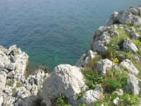 Capo San Vito - le rocce ed il mare - 10 maggio 2009   - San vito lo capo (1743 clic)
