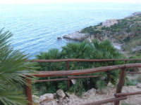 Riserva Naturale Orientata Zingaro - Cala Tonnarella dell'Uzzo - 24 febbraio 2008  - Riserva dello zingaro (1170 clic)