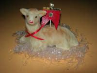 agnello pasquale, realizzato con pasta di mandorle - 6 aprile 2009   - Castellammare del golfo (12089 clic)