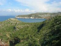 Golfo di Castellammare - la costa tra Guidaloca e Castellammare del Golfo - 5 aprile 2009  - Castellammare del golfo (932 clic)