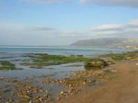spiaggia di levante - golfo di Castellammare - 1 marzo 2009  - Balestrate (2977 clic)