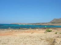 Golfo del Cofano - mare stupendo - 30 agosto 2008  - San vito lo capo (495 clic)