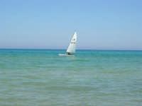 zona Plaja - il mare ed una vela - 7 agosto 2008  - Alcamo marina (816 clic)