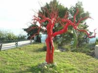 l'albero rosso (cosa si arriva a fare per attirare l'attenzione!) - 9 novembre 2008  - Caltabellotta (1684 clic)