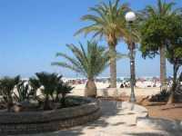 giardino pubblico adiacente alla spiaggia - 1 agosto 2009  - San vito lo capo (944 clic)