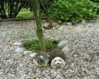 Casarsa della Delizia (PN) - simpatici animali (finti!) nel giardino del Bed & Breakfast THE COTTAGE - 23 agosto 2006   - Alcamo (23233 clic)