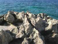 Golfo del Cofano - rocce sul mare - 29 luglio 2009   - Custonaci (1750 clic)