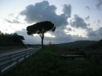 panorama campestre a sera - 8 febbraio 2009   - Calatafimi segesta (2605 clic)
