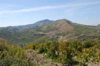 panorama dal colle Pianto Romano - 4 ottobre 2007   - Calatafimi segesta (852 clic)