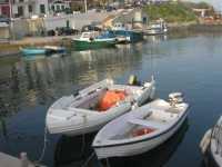 al porto - 17 maggio 2009   - Marinella di selinunte (1399 clic)