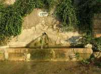 fontana - 4 ottobre 2009  - Santa ninfa (3387 clic)