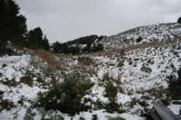 neve sul monte Bonifato - 15 febbraio 2009   - Alcamo (2014 clic)