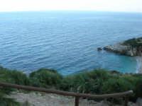 Riserva Naturale Orientata Zingaro - Cala Tonnarella dell'Uzzo - 24 febbraio 2008  - Riserva dello zingaro (2566 clic)