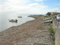 spiaggia ricoperta dalle alghe e mare calmo - 9 novembre 2008   - Ribera (1991 clic)