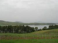 LAGO POMA - lago artificiale nei pressi di Partinico - 17 aprile 2006  - Partinico (2802 clic)