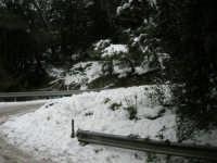 neve sul monte Bonifato - Riserva Naturale Orientata Bosco d'Alcamo - 15 febbraio 2009               - Alcamo (2453 clic)