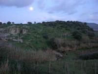panorama campestre a sera - Fiume Caldo - 8 febbraio 2009   - Calatafimi segesta (2710 clic)