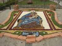 festeggiamenti in onore di Maria Santissima dei Miracoli, patrona di Alcamo - infiorata dinanzi la Chiesa Madre S. Maria Assunta - 21 giugno 2009   - Alcamo (2504 clic)