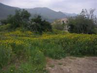 panorama - 11 aprile 2009   - Scopello (2377 clic)