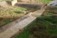 corso d'acqua dopo le abbondanti piogge della notte precedente - 1 febbraio 2009  - Erice (5822 clic)