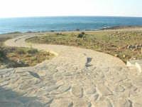 Golfo di Bonagia: passeggiata a mare - 27 aprile 2008   - Cornino (1009 clic)