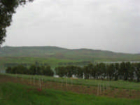 LAGO POMA - lago artificiale nei pressi di Partinico - 17 aprile 2006  - Partinico (2558 clic)