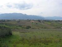 campagna alcamese e monti di Castellammare - 23 febbraio 2009   - Alcamo (2645 clic)
