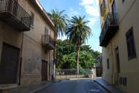 via Canale Vecchio - 14 febbraio 2009  - Castellammare del golfo (1956 clic)