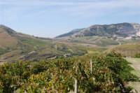 panorama dal colle Pianto Romano - 4 ottobre 2007   - Calatafimi segesta (969 clic)